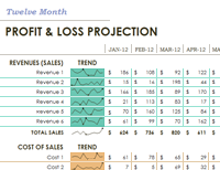 Profit Loss Statement Sample Excel