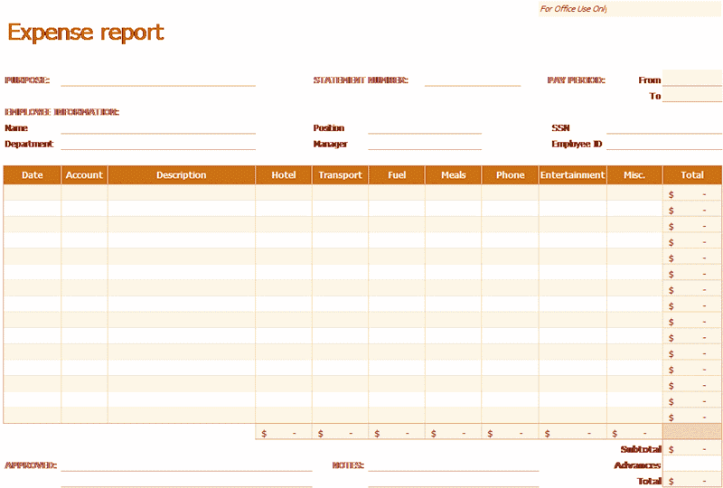Excel-2007 Expense Report