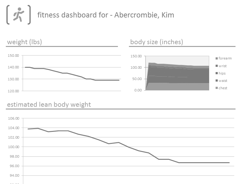 Download Excel 2003 Fitness Tracker Dashboard