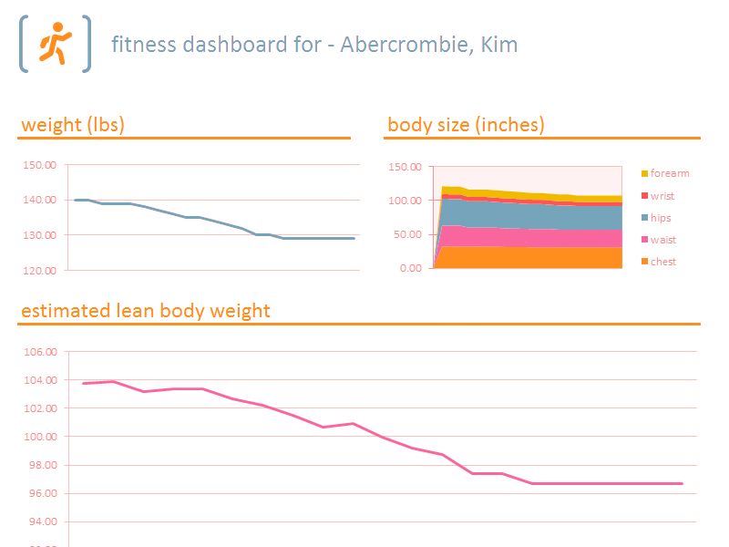 Download Excel 2007 Fitness Tracker Dashboard