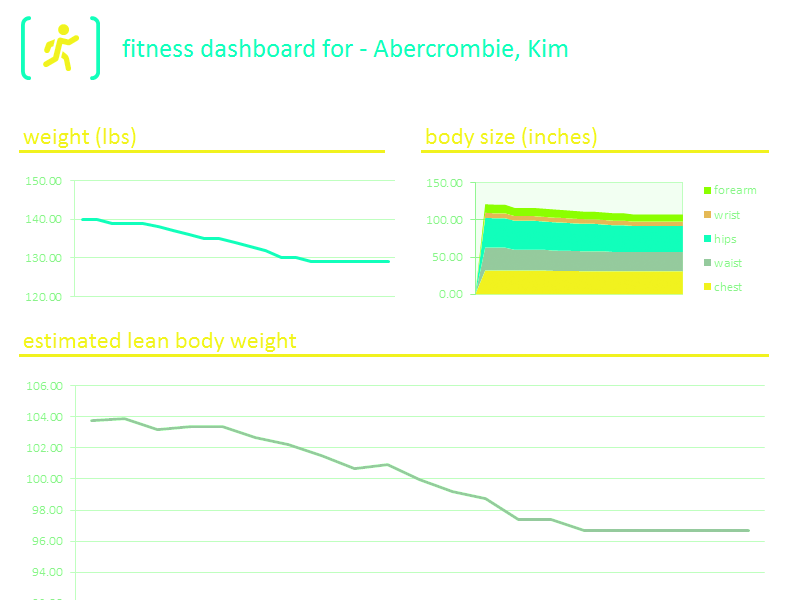 Download Excel 2010 Fitness Tracker Dashboard