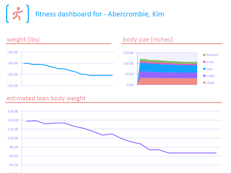 Download Excel 2013 Fitness Tracker Dashboard