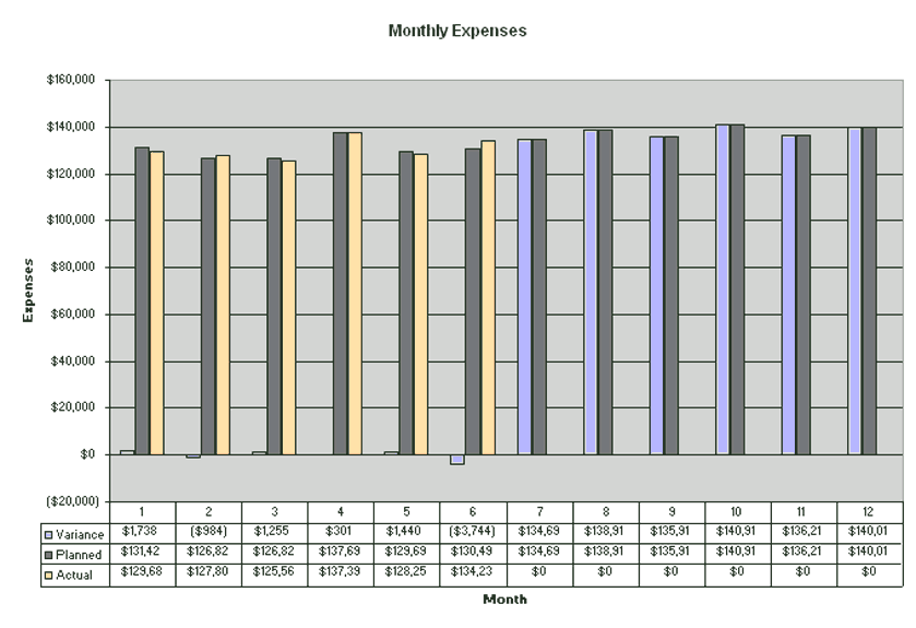 Excel-2010 Manage Detailed Expense Estimates And Control
