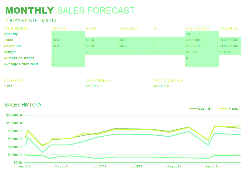 Excel-2010 Monthly Sales Report