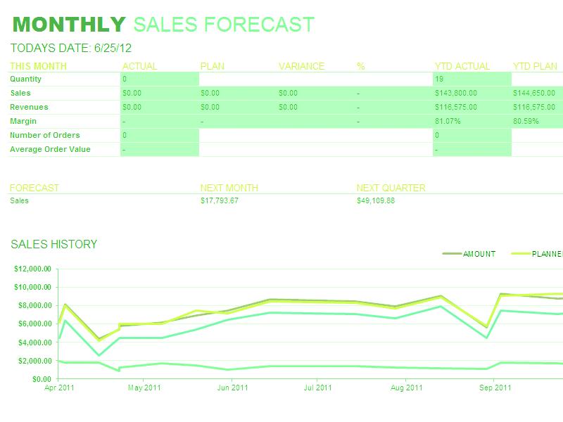 Excel-2010 Monthly Sales Report
