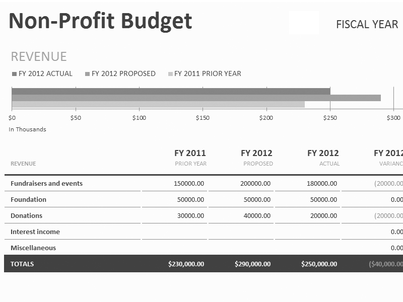 Download Excel-2003 Non-profit Budget W/fundraising