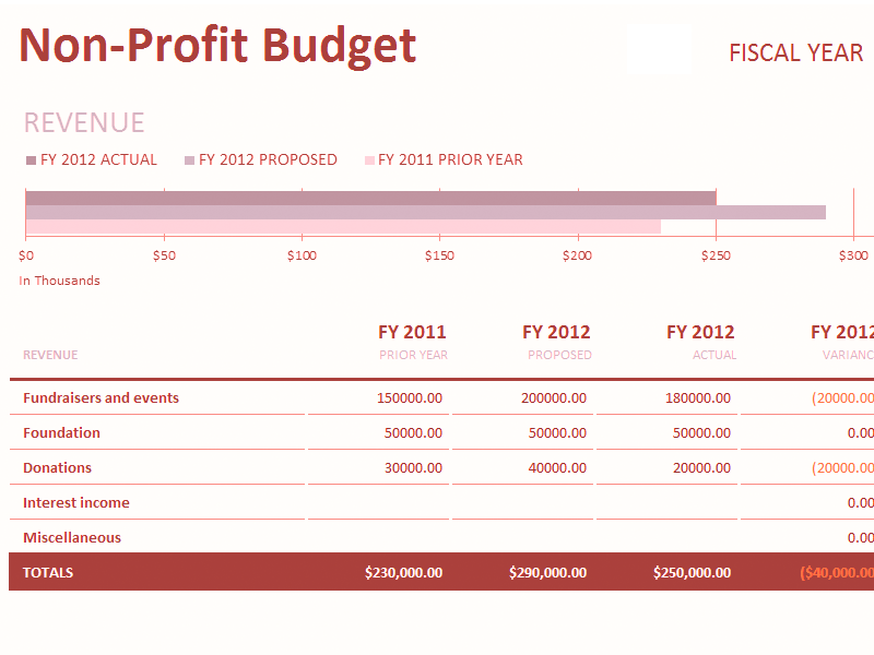 Download Excel-2007 Non-profit Budget W/fundraising