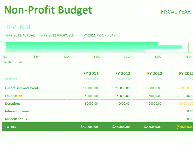Download Excel-2010 Non-profit Budget W/fundraising