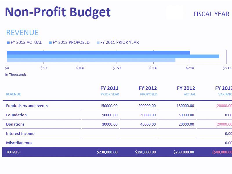 Download Excel-2013 Non-profit Budget W/fundraising