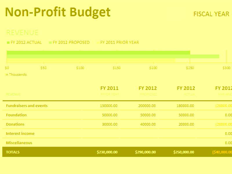 Download Excel-2016 Non-profit Budget W/fundraising
