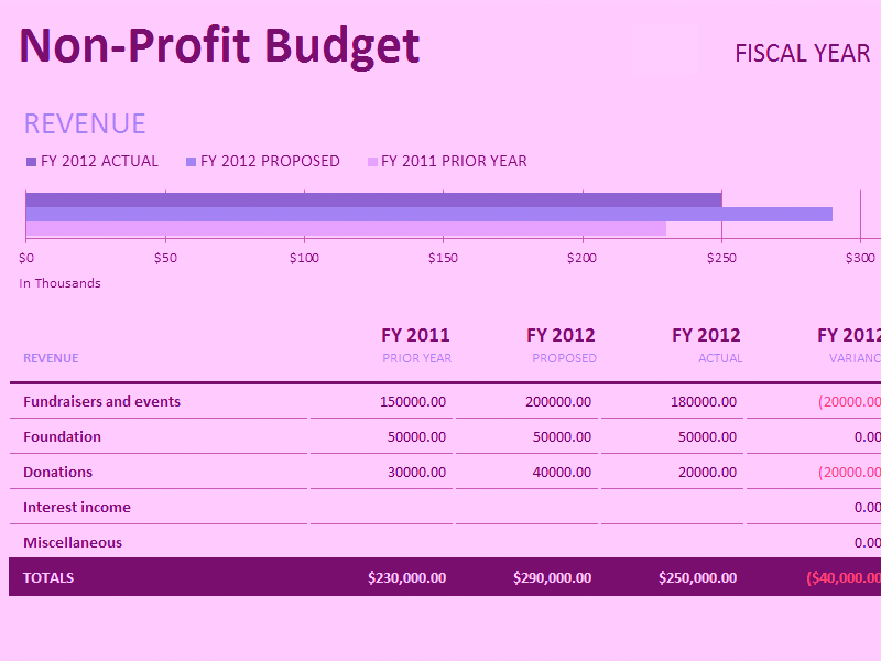 Microsoft Excel Non-profit Budget W/fundraising