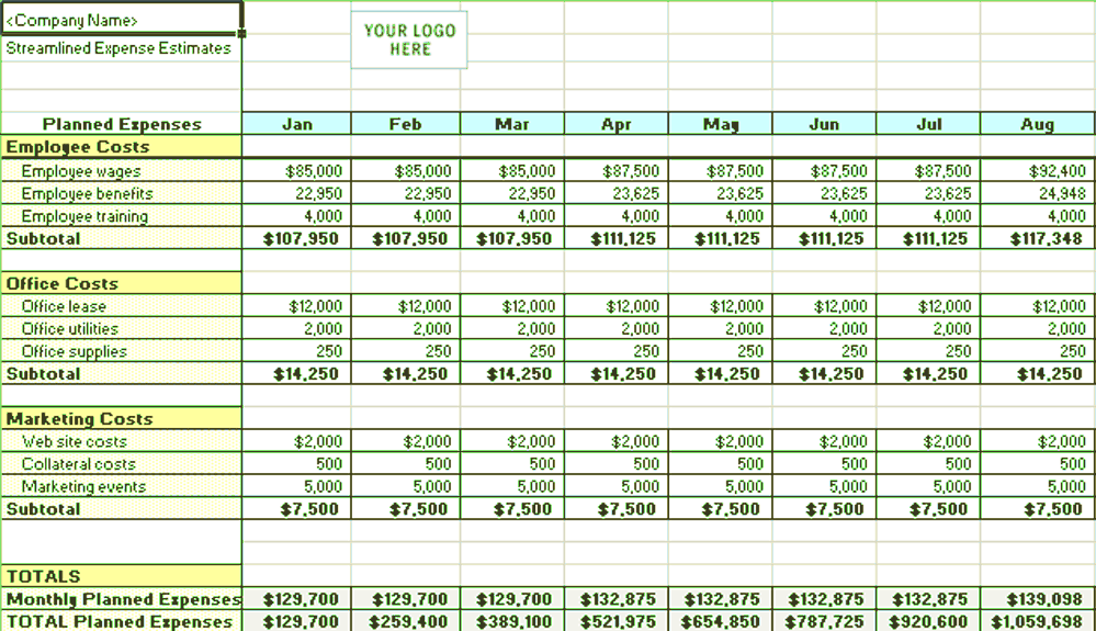 Excel-2010 Streamlined Expense Estimates And Control