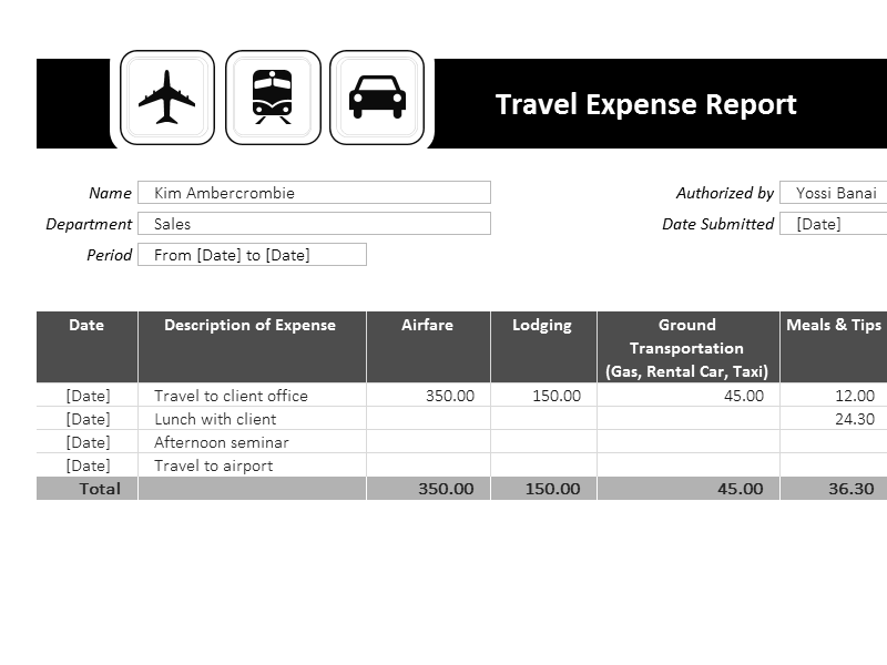 Download Excel-2003 Travel Expense Report