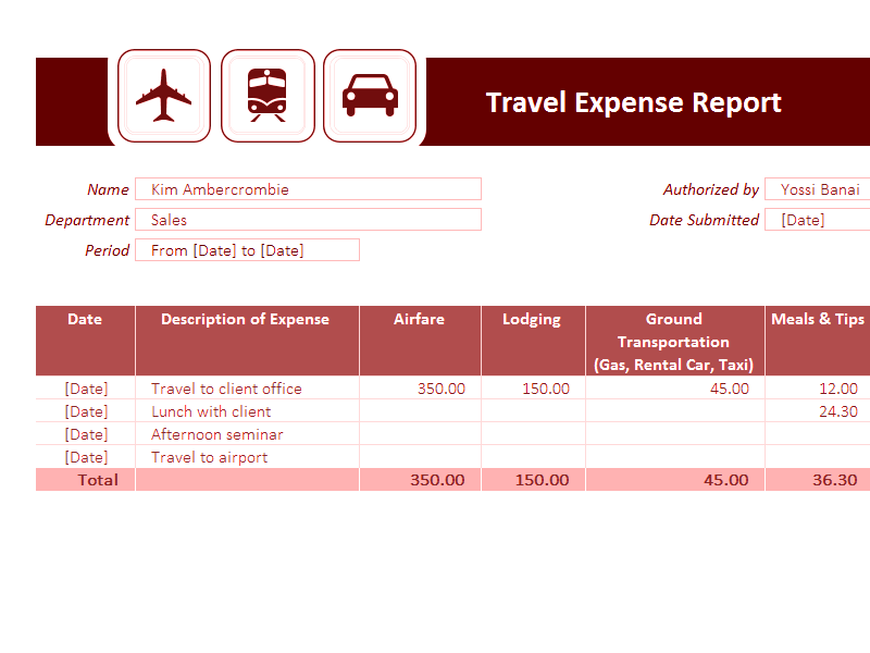 Download Excel-2007 Travel Expense Report
