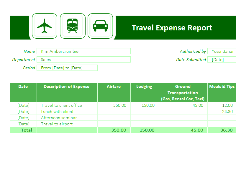 Download Excel-2010 Travel Expense Report
