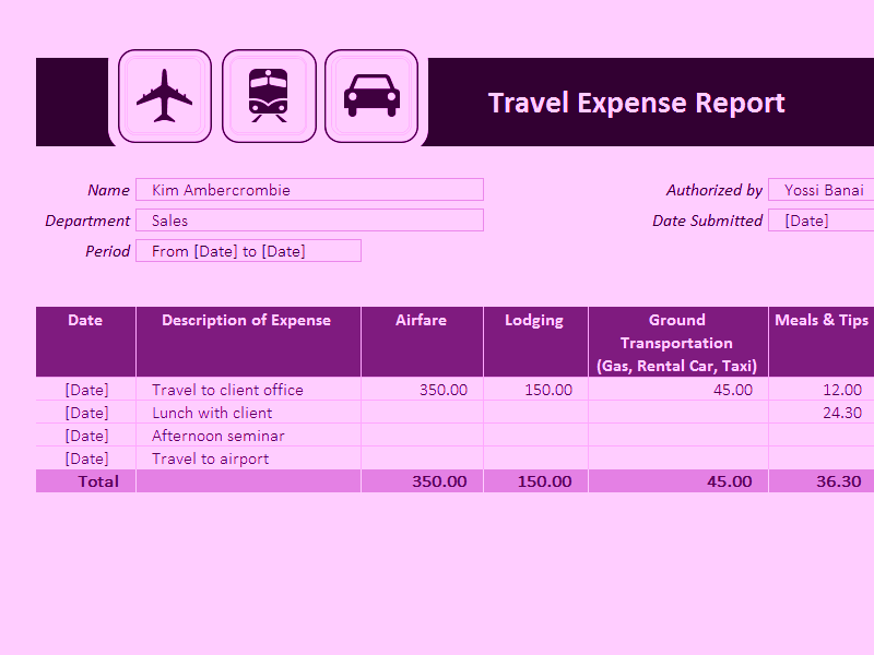 Microsoft Excel Travel Expense Report