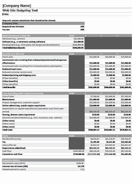 Download Excel-2003 Website Budget