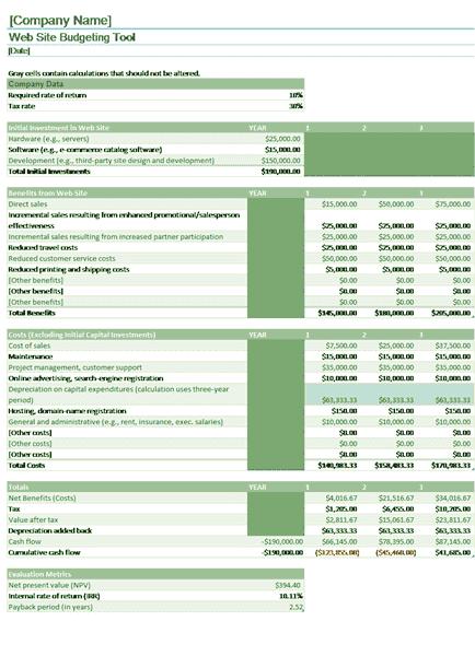 Download Excel-2010 Website Budget