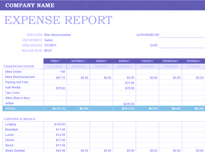 Download Excel-2013 Weekly Expense Report