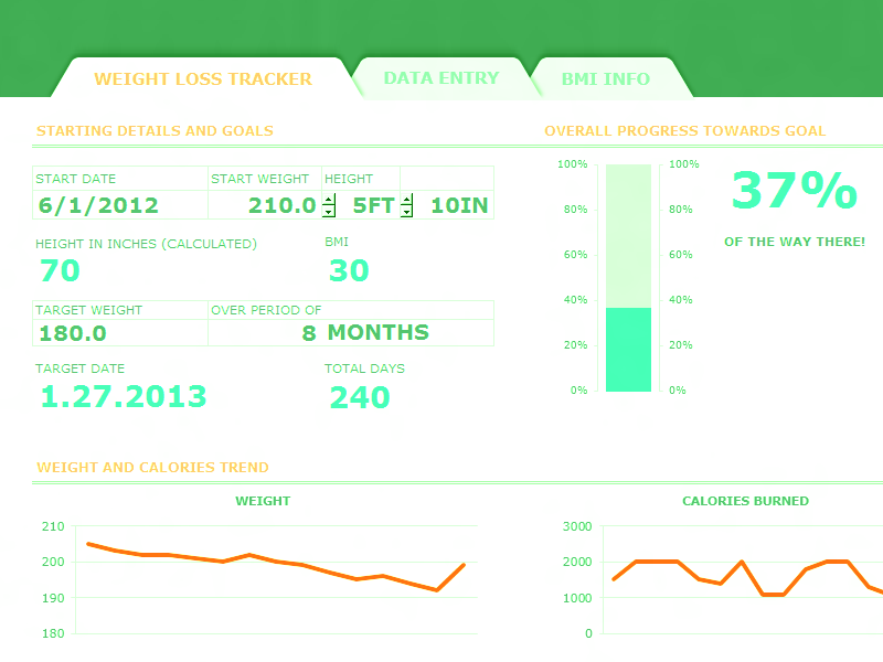 Excel 2010 Weight Loss Tracker With Bmi Dashboard
