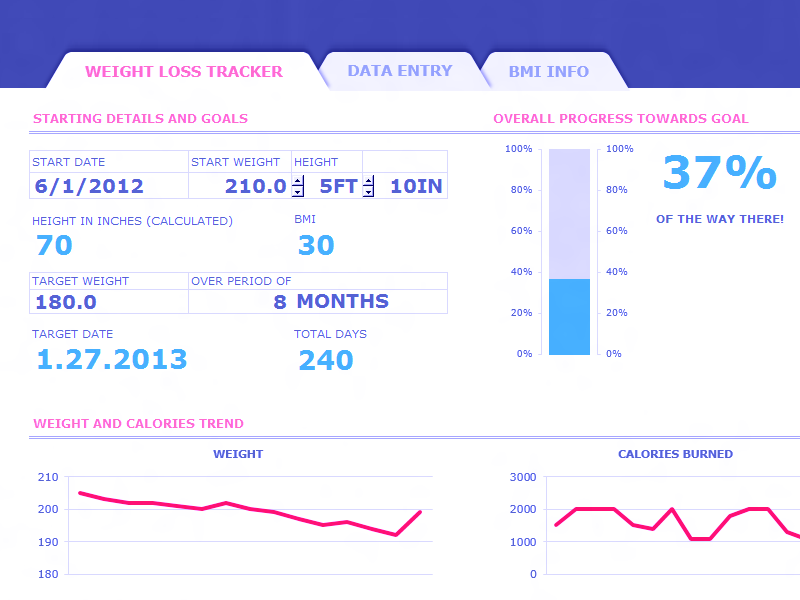 Excel 2013 Weight Loss Tracker With Bmi Dashboard